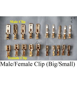 CLIP - MALE (BIG / SMALL), FEMALE (BIG / SMALL)